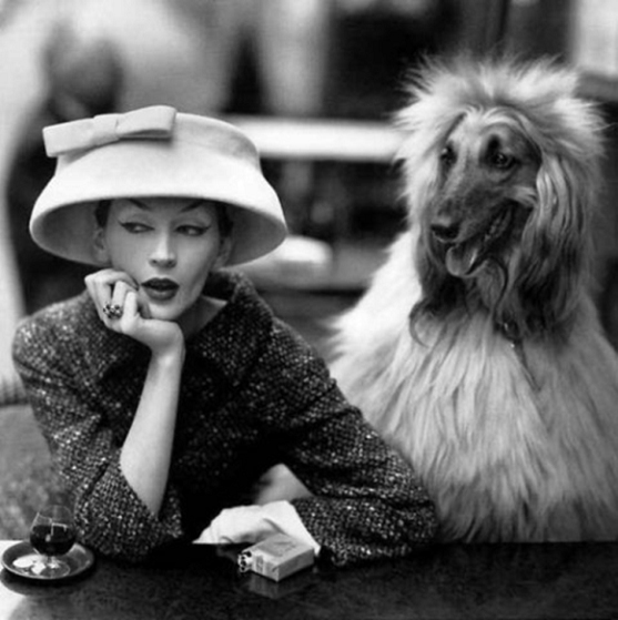 """Dovima with Sacha, Cloche and Suit by Balenciaga, Café des Deux Magots, Paris, August, 1955"" © Richard Avedon, in ""Avedon Fashion 1944-2000,"" at I.C.P."